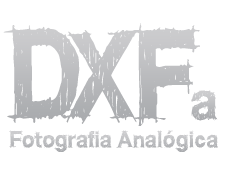 DXFoto Logo