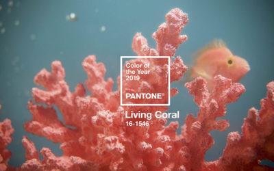 Pantone® Living Coral é a cor do ano de 2019